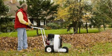Top Best Walk Behind Leaf Blowers Review Guide For 2021-2022